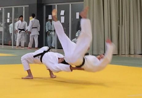 the master key to judo